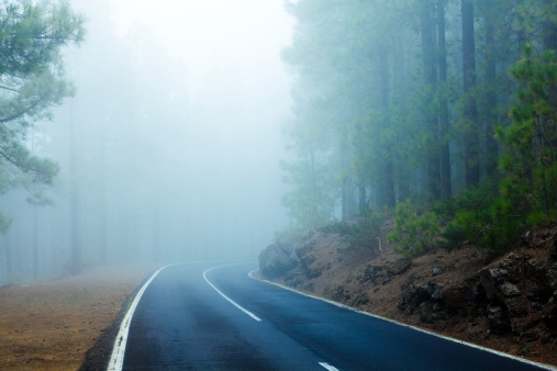 Dirt Road「Road in the Forest Trough Fog, El Teide National Park」:スマホ壁紙(6)