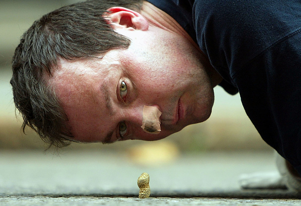 Nut - Food「Student Loans Protester Pushes Monkey Nut To Downing Street 」:写真・画像(9)[壁紙.com]