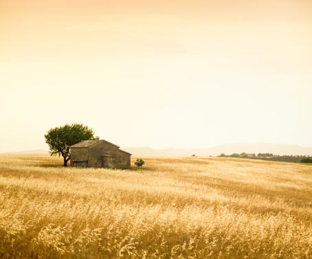 Alpes-de-Haute-Provence「Provencal farm」:スマホ壁紙(9)