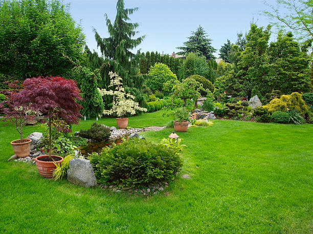 Beautiful manicured garden with bushes, trees, stones, pond, juicy grass:スマホ壁紙(壁紙.com)