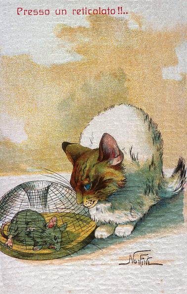 子猫「Like A Cat With The Mouse」:写真・画像(7)[壁紙.com]