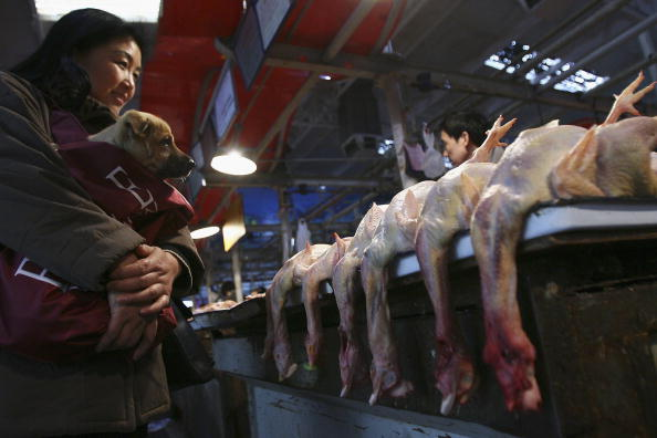Chicken Meat「China Confirms Two More Human Bird Flu Cases」:写真・画像(3)[壁紙.com]