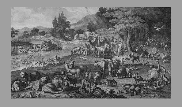 Garden Of Eden - Old Testament「Adam Naming The Creation」:写真・画像(7)[壁紙.com]