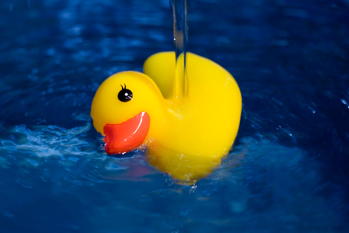 Capsizing「Rubber Duck in Water」:スマホ壁紙(8)