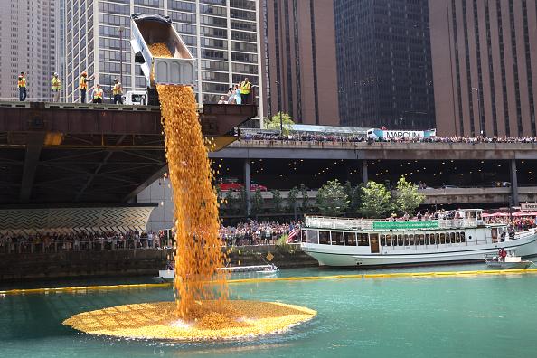 "Bestpix「Rubber Ducks ""Race"" Down Chicago River For Charity」:写真・画像(2)[壁紙.com]"