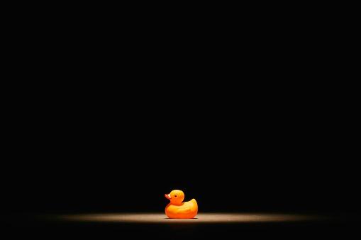 おもちゃのアヒル「Rubber Duck」:スマホ壁紙(14)