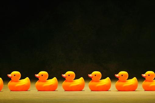おもちゃのアヒル「Rubber Ducks in a Row」:スマホ壁紙(19)
