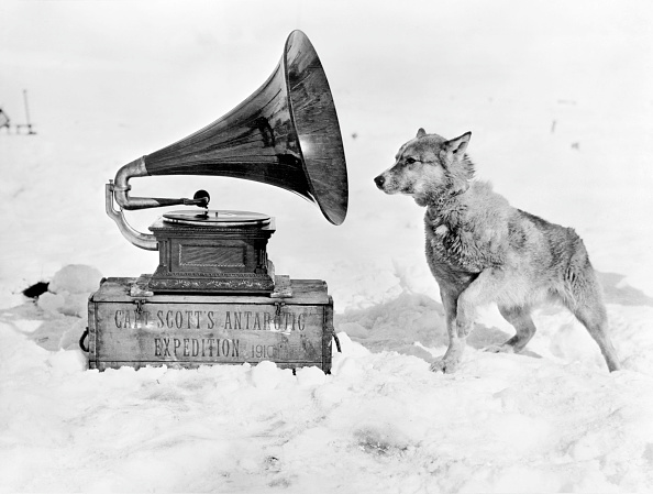 Gramophone「Terra Nova Expedition」:写真・画像(5)[壁紙.com]