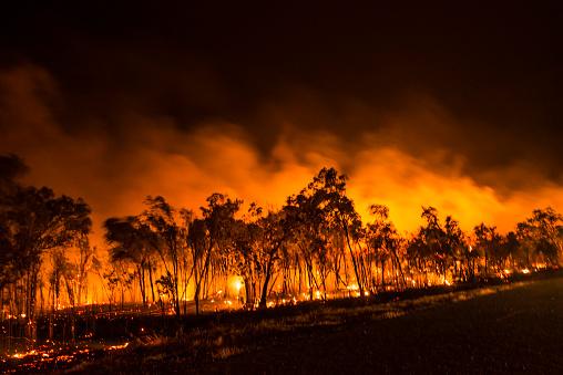 Inferno「A Bushfire Or Wildfire Burning In Outback Australia」:スマホ壁紙(4)