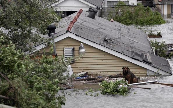 Pensacola「Hurricane Katrina Hits The Gulf Coast」:写真・画像(14)[壁紙.com]