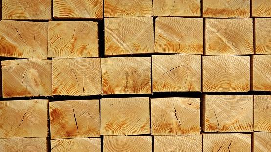 Deforestation「squared timbers at sawmill」:スマホ壁紙(0)