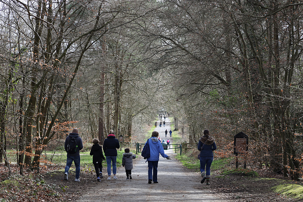 Walking「National Trust To Allow Free Entry To Its Parks And Gardens During Coronavirus Outbreak」:写真・画像(8)[壁紙.com]