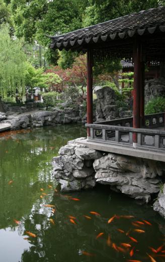 Shanghai「Chinese Garden」:スマホ壁紙(19)