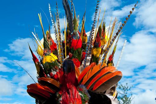 伝統的な祭り「Colorful headwear in traditional Sing Sing ceremony, Mount Hagen, Highlands, Papua New Guinea」:スマホ壁紙(1)