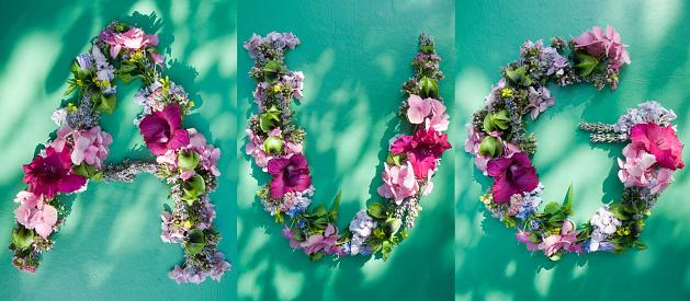 Chinese Lantern「Flower arrangement building first three letters of august」:スマホ壁紙(18)