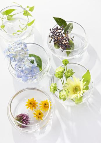 あじさい「Flower arrangement」:スマホ壁紙(7)