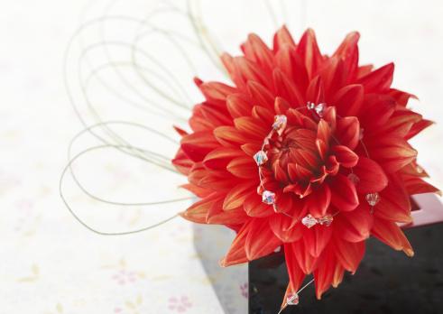 Chinese New Year「Flower arrangement」:スマホ壁紙(13)