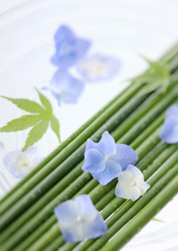 あじさい「Flower arrangement」:スマホ壁紙(11)