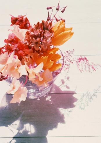 flower「Flower Arrangement」:スマホ壁紙(1)