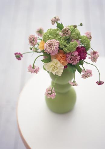 カーネーション「Flower Arrangement」:スマホ壁紙(10)