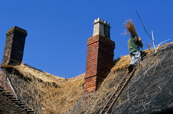 Brick Wall「Carrying bundles of thatch to apex of roof.」:写真・画像(2)[壁紙.com]