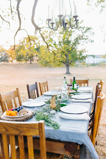 Picnic「Empty dinner table in field」:スマホ壁紙(11)