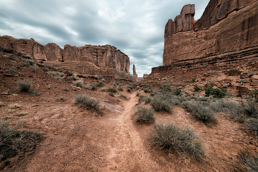 Sagebrush「Rock formations in desert, Moab, Utah, United States」:スマホ壁紙(15)