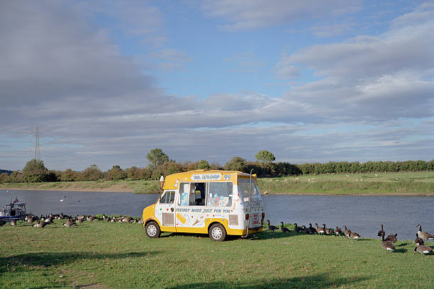 Ice cream van at riverbank surrounded by ducks:スマホ壁紙(壁紙.com)