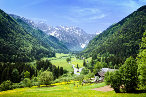 European Alps「Idyllic Alps valley Logarska dolina, Slovenia」:スマホ壁紙(12)