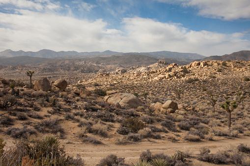 Motorsport「Dirt road in remote desert landscape」:スマホ壁紙(10)
