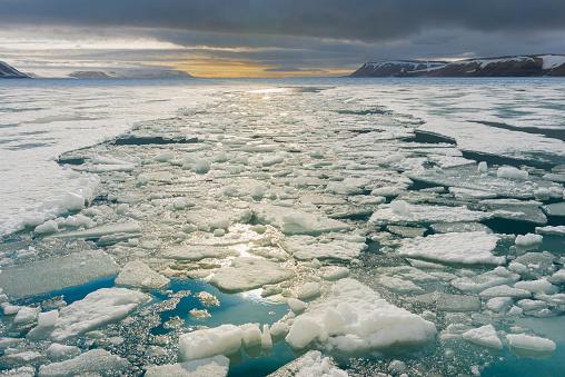 Pack Ice「Palanderbukta Bay」:スマホ壁紙(7)