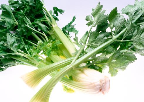 セロリ「Celery」:スマホ壁紙(5)