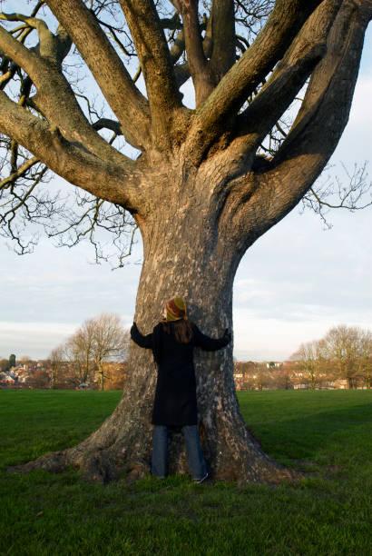 Woman hugging a tree:ニュース(壁紙.com)