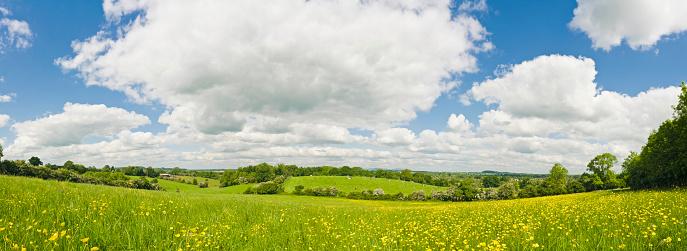 Patchwork Landscape「Summer meadow panorama」:スマホ壁紙(9)