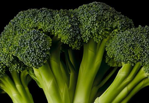 Broccoli「Brocoli」:スマホ壁紙(11)