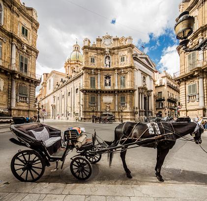 Horse「Typical cart in Piazza (square) dei Quattro Canti, also called Piazza (square) Villena or Ottagono del Sole or Teatro del Sole」:スマホ壁紙(7)