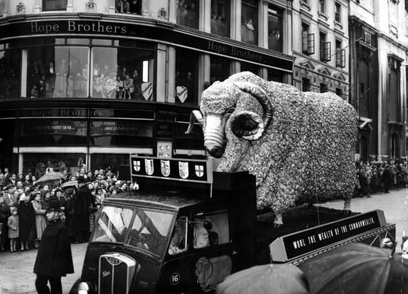Wool「Lord Mayors Show」:写真・画像(2)[壁紙.com]