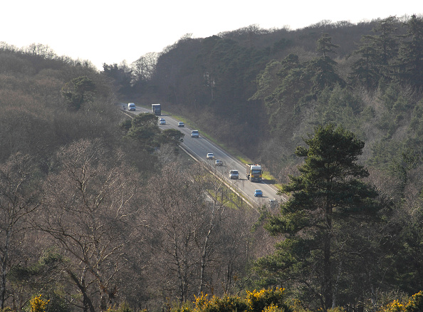 Two Objects「The A31 Dual Carriageway through New Forest」:写真・画像(18)[壁紙.com]