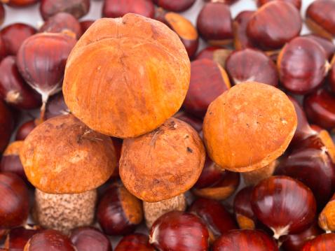 chestnut「Raw food」:スマホ壁紙(4)