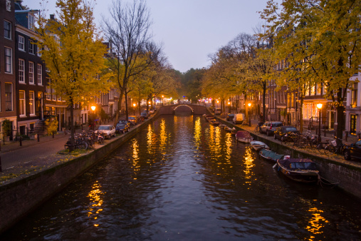 Amsterdam「Evening lights light up a canal lined with coloured leaves in the fall in Amsterdam, the Netherlands.」:スマホ壁紙(2)