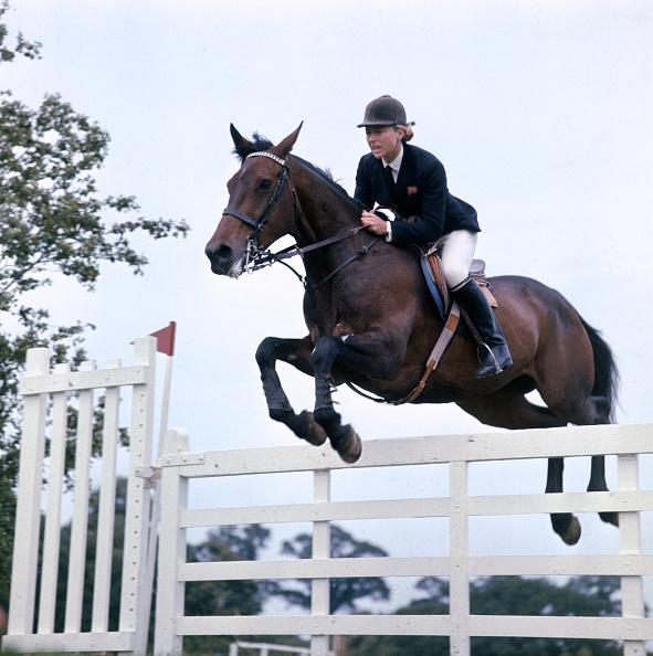 Equestrian Event「Coakes Jumpes」:写真・画像(4)[壁紙.com]