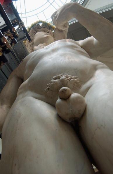 Michelangelo's David「Michelangelo's David to honor the women's day」:写真・画像(17)[壁紙.com]