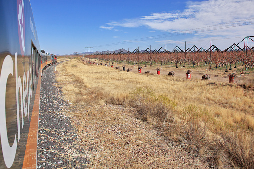 Railway「The Chepe (Chihuaha to Pacific) train passes Mennonite apple orchards in Chihuaha state, Mexcio.」:スマホ壁紙(14)