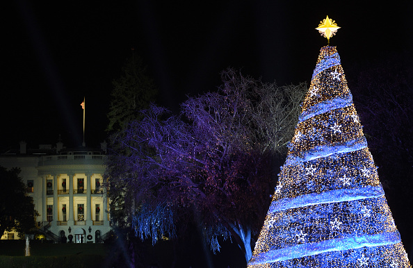 Christmas「President And Mrs Trump Attend National Christmas Tree Lighting Ceremony」:写真・画像(14)[壁紙.com]