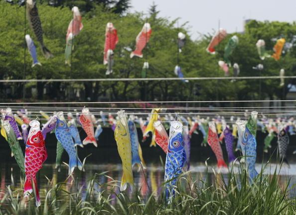 こいのぼり「Carp streamers are hung over the river」:写真・画像(18)[壁紙.com]