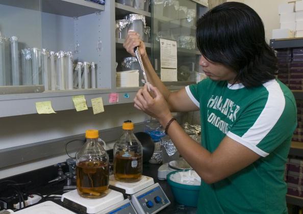 Specimen Holder「Scientests Complete Rice Genome Map」:写真・画像(13)[壁紙.com]