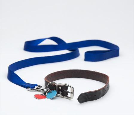Animal Harness「Dog Leash」:スマホ壁紙(4)