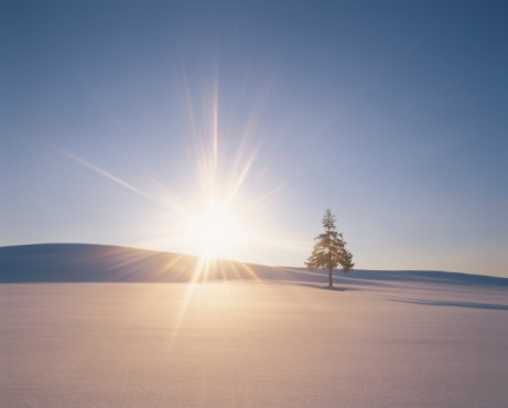 星空「The Sun Setting Over a Single Tree in a Snowy Field. Biei, Hokkaido, Japan」:スマホ壁紙(3)