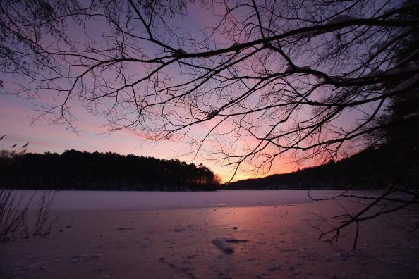 Lake「Freezing Temperature Hit Germany」:写真・画像(7)[壁紙.com]