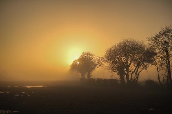 Fog「Freezing Temperatures Hit The UK」:写真・画像(16)[壁紙.com]